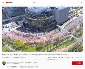桜の名所をライブカメラ動画で観て花見を楽しむ時代?